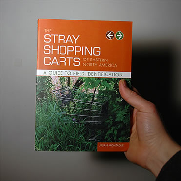 The Stray Shopping Carts Guide cover