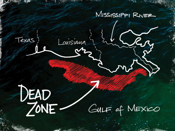 Map - Gulf Of Mexico