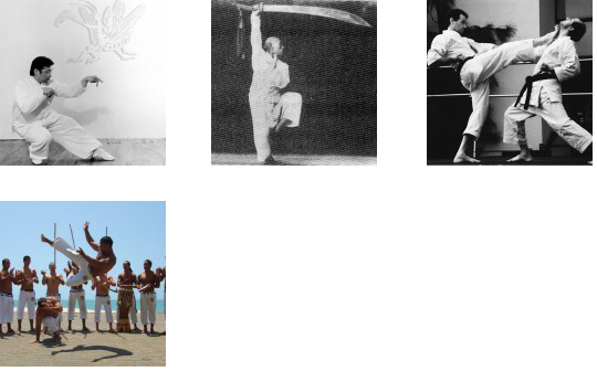 Thumbnail for Designing Martial Movements