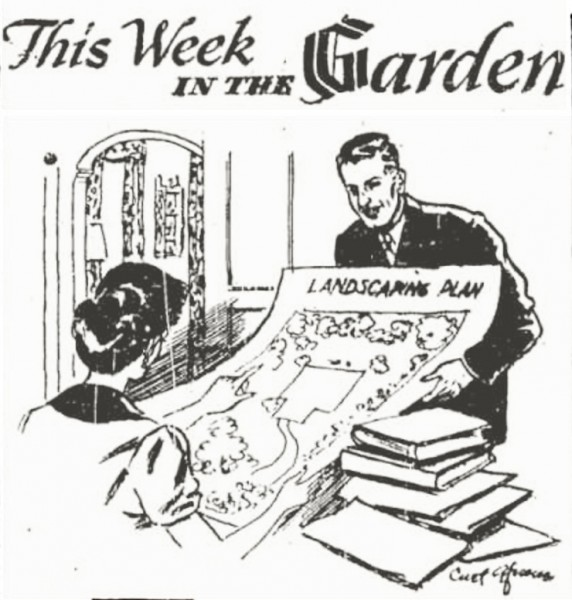 """Curt Gfroerer's masthead cartoon for the """"This Week In The Garden"""" column. Gfroerer was an avid (not Aphid) gardener."""