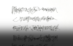 Thumbnail for Selected Writing In Tongues