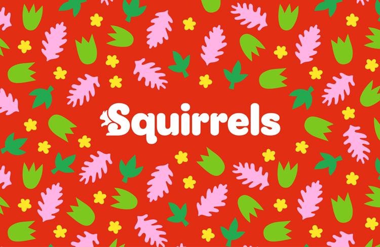 Squirrels New Identity