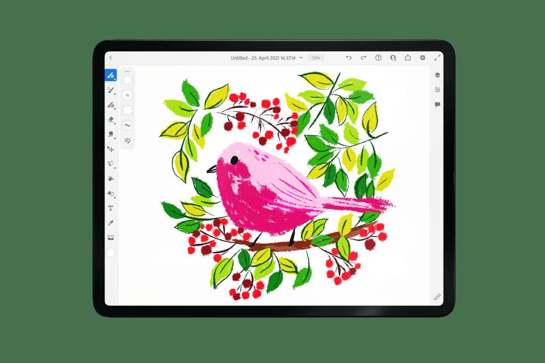 adobe fresco beginner tutorial illustration cute bird