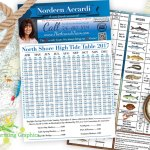 Nordeen Accardi Tide Charts