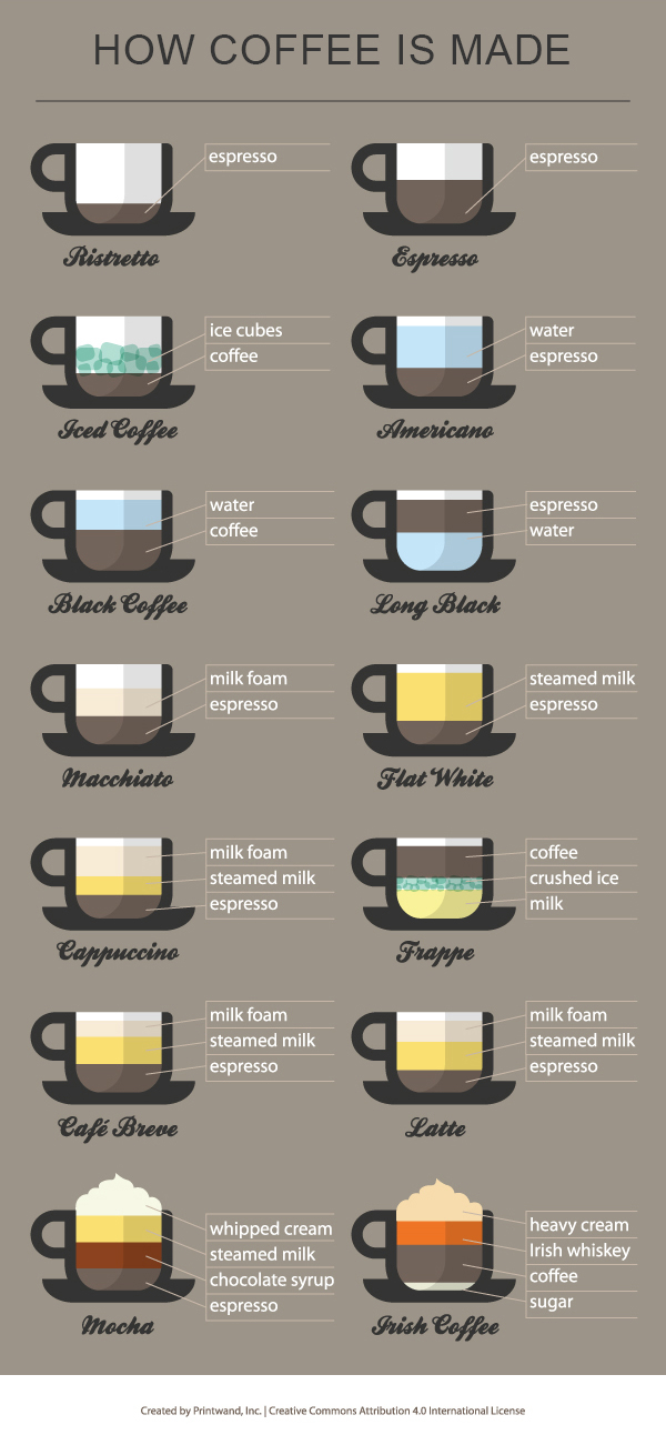coffee infographic everything you