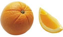 Citrus_sinensis