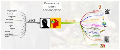 3.1 MindMap_Dominante_taken_hersenhelften