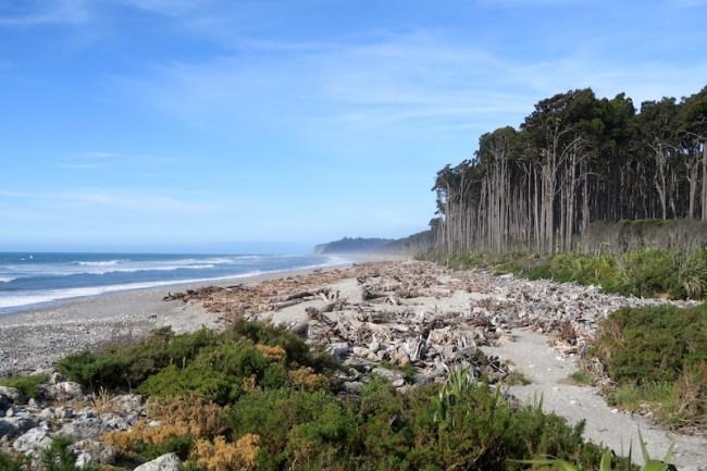 costa oeste de nueva zelanda