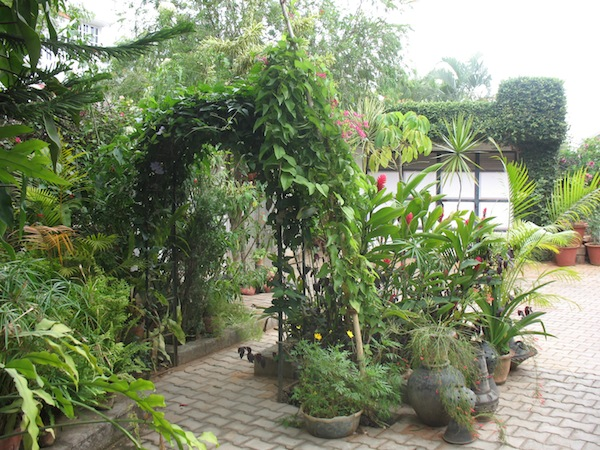 Indian Home Garden Plans Home Home Plans Ideas Picture