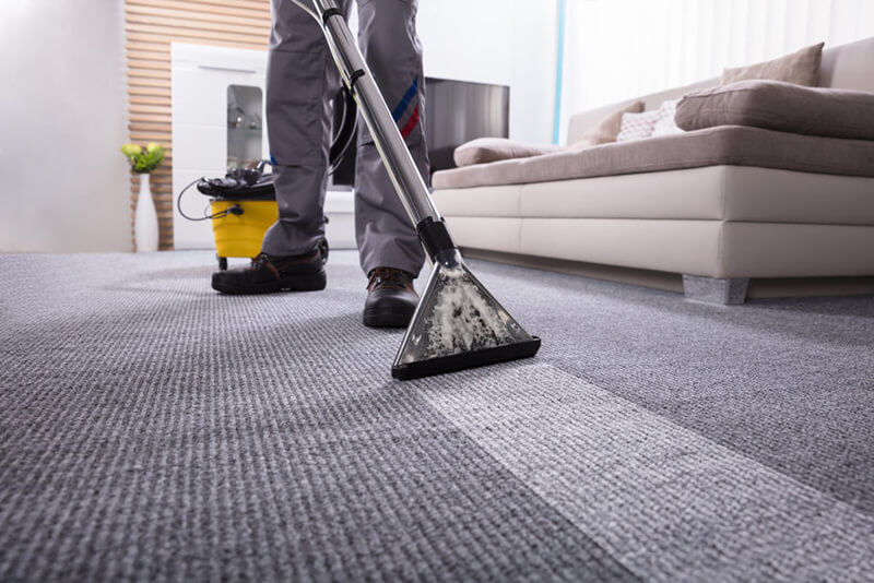 top pascagoula carpet cleaning