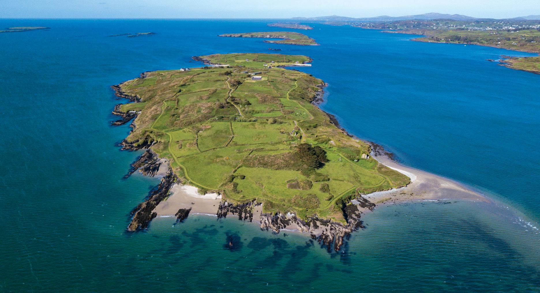 horse island ireland europe