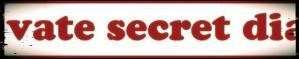 Private Secret Diary banner