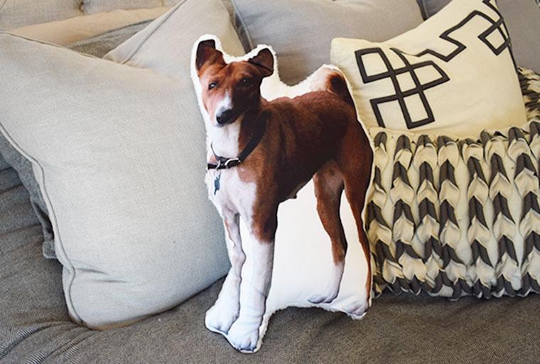 DIY Custom Photo Dog Pillow