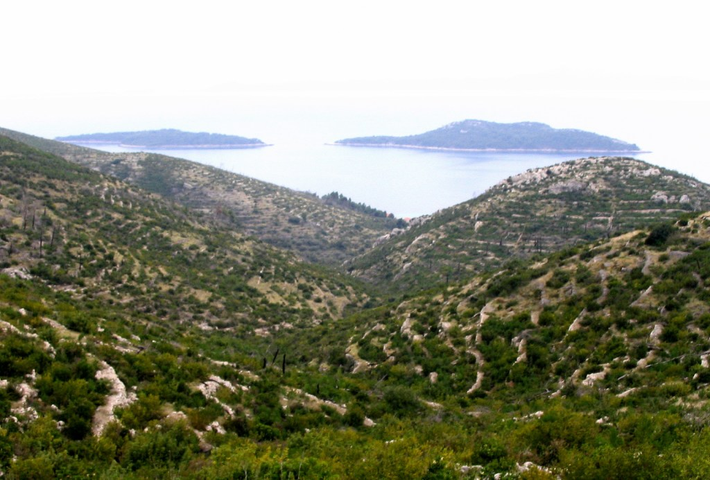 View from hillsides to Prizba