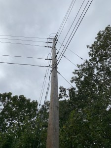 Telephone poll with wires