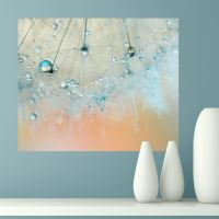 Introducing Ingrid Beddoes Fine Art Photography Wall ...