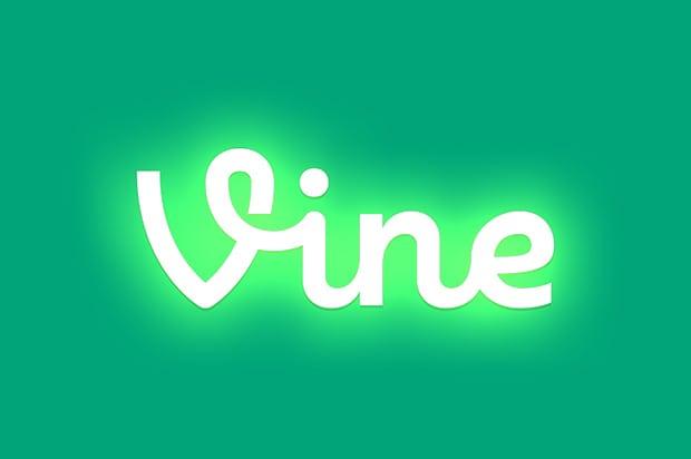 Image result for vine