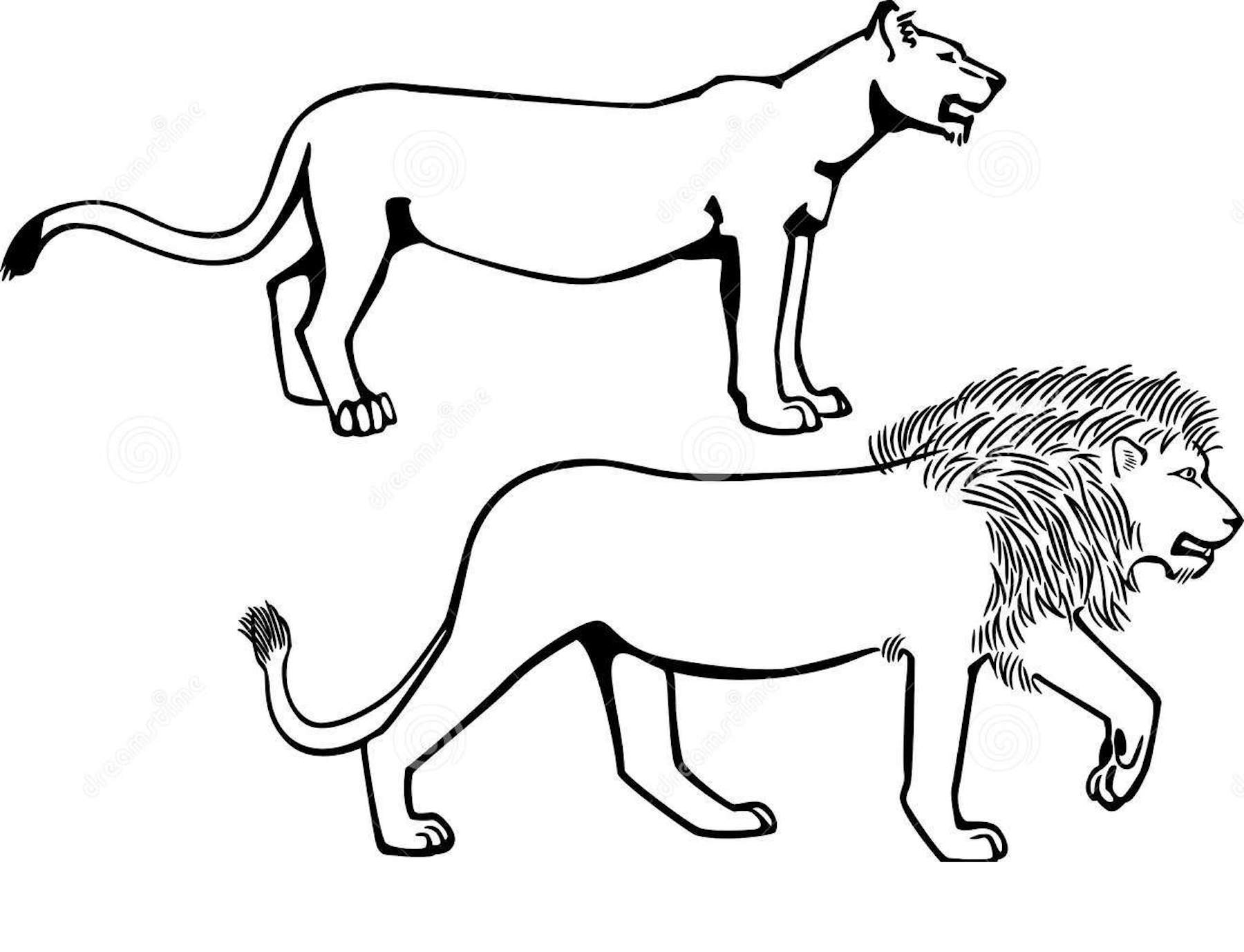 Lion Coloring Pages, Clipart, And Other Free Printable