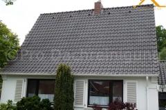 pro dachreinigung851
