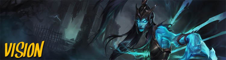league of legends tipps vision