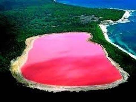 Розовое озеро Хиллер — одно из самых уникальных водоемов планеты