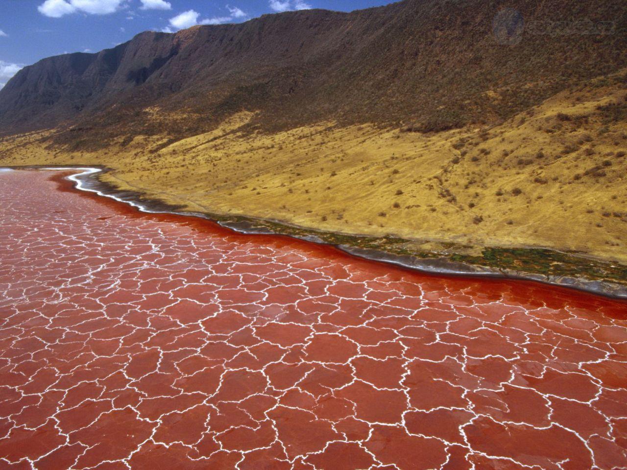 Красное озеро Натрон — безжизненное озеро-убийца