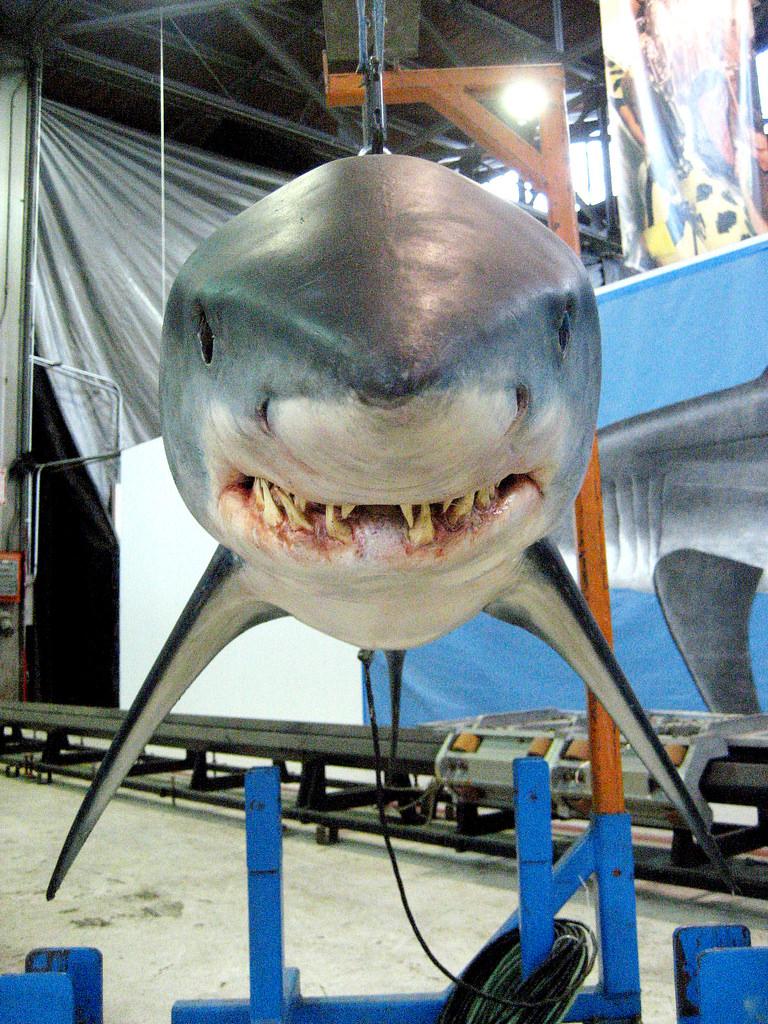 «С акулами жить – по-акульи плыть», или «Увлекательное подводное путешествие Фабьена Кусто»
