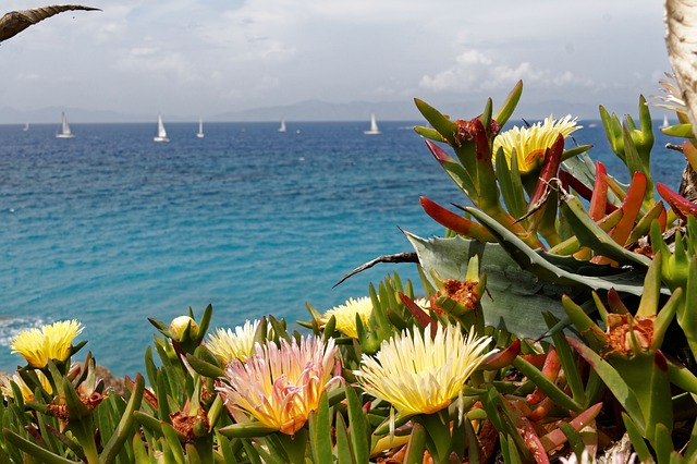 пляжи и достопримечательности родоса