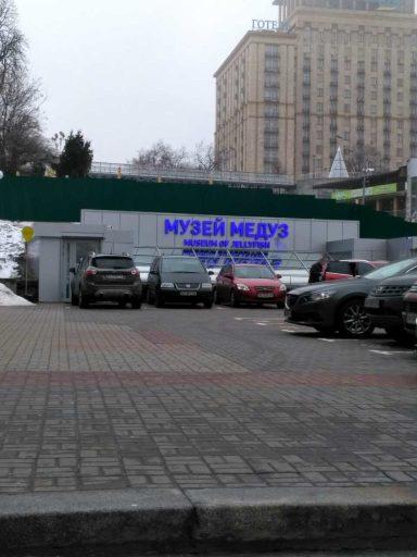 музей медуз в центре Киева