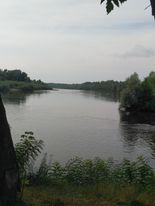река Десна и Любич Летки