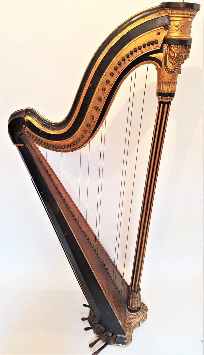cousineau harp musical instruments