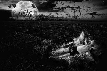 Moonlight Sonata, fotografia castigatoare