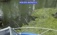 deţinerea sau folosirea la pescuit de către persoanele neautorizate a năvoadelor, voloacelor, prostovoalelor, vârşelor, vintirelor, precum şi a altor tipuri de unelte de pescuit comercial