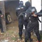 Jandarmii au facut pace intre patru... scandalagii