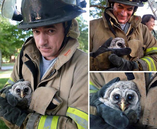 hasici-zachrana-zvirat-1
