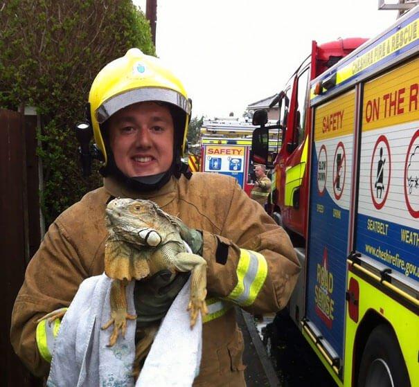 hasici-zachrana-zvirat-6