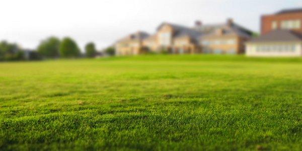 Podzimní péče o trávník