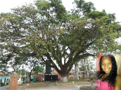 La joven Joselyn Granja Carabalí se habría suicidado en Villa Rica, Cauca