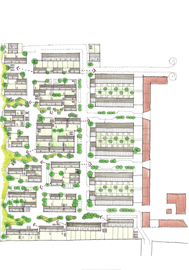 Abode at Great Kneighton  Proctor  Matthews Architects