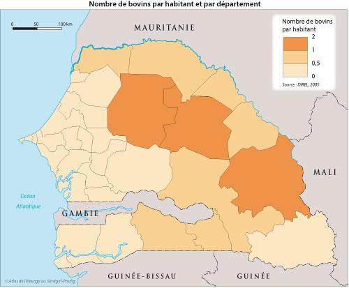 Sénégal-Les territoires de l'élevage-Peut-on cartographier le cheptel national ?-Nombre de bovins par habitant et par département