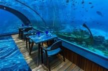 Restaurants & Bars Hurawalhi Tauchen Auf Den Malediven