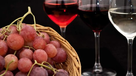 Per vini Solopaca DOC si comprendono diversi tipi di bianchi e rossi