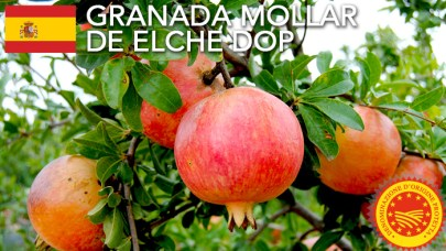 Granada-Mollar-de-Elche-DOP