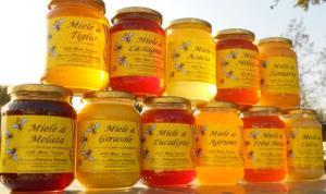 etichette-miele