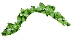 province- fonte basilicogenovese.it