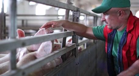 El método de estimación objetiva del IRPF atenúa la presión fiscal sobre el sector agrario en el periodo impositivo 2015
