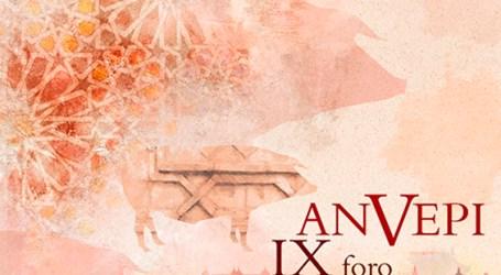 IX Foro ANVEPI