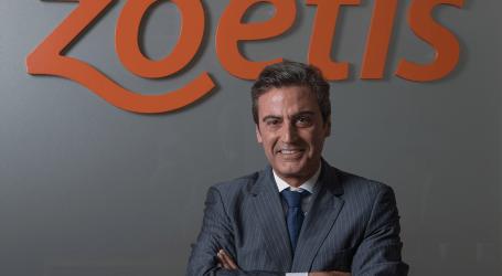 Zoetis, compañía líder del sector salud animal, factura 5.825 millones de USD consolidándose como la primera compañía de salud animal a nivel mundial