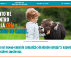 www.consentidovacuno.es, espacio de referencia para el sector vacuno de carne