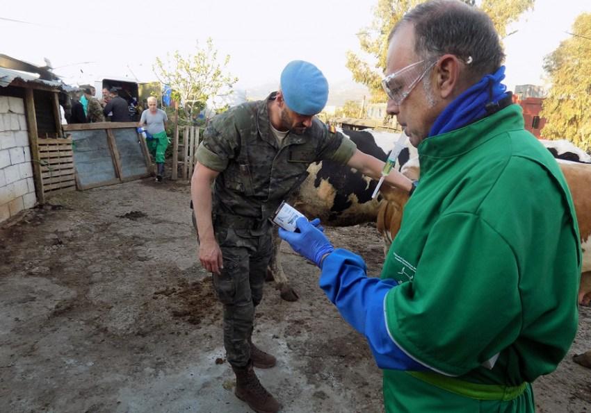 foto veterinarios libano